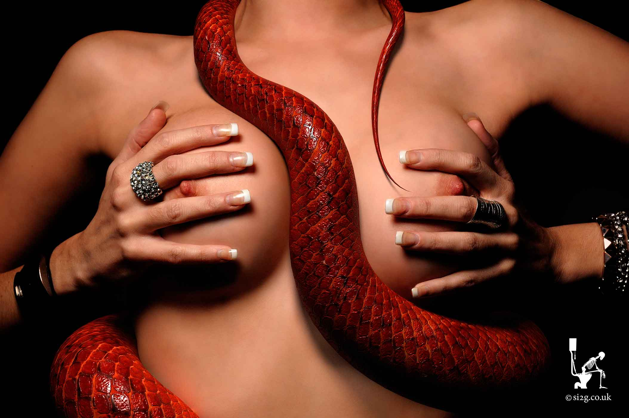 Tail Between Boobs - This iconic design of a reptilian tail in the cleavage of a topless unknown was commissioned for sleazy London Rock band King Lizard.  I was asked to turn up on a Saturday morning to photograph a topless model with a real lizard crawling across her chest.  I was also told the model and lizard had been arranged.  I expected to turn up at the studio to see a line of guys with lizards queuing half way round the block and no chance of a girl arriving and willing to expose herself.  But, to my surprise, a willing model arrived but the lizard owner wanted an extortionate fee for turning up.  I opted to photograph the model, design a CGI snake and composite the two together.  Viva La Decadence.